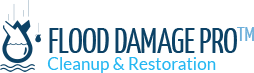 Flood Damage Pro-Potomac